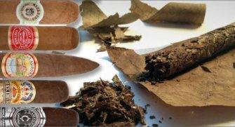 Sizlere en iyi ve en popüler puro markalarını tanıtıyoruz!