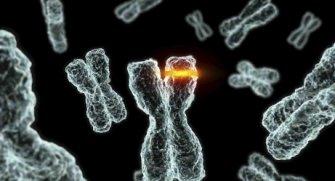 İnsanlarda son derece korkunç etkilere sahip genetik mutasyonları sizler için listeledik.