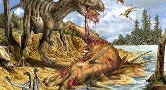Arkeoloji uzmanları bir ilke daha imza attı.İlk dinozor beyninin fosili ortaya çıktı.