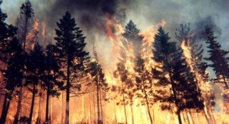 Durdurulamaz yangın ve doğal felaketler.